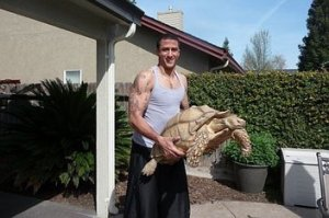 Big Kap, Big Turtle